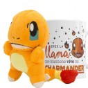 Pokémon Set Charmander